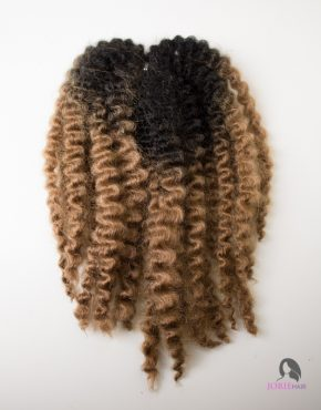 bantu-twists-ombre-1b-27